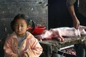 BUTCHER'S DAUGHTER, CHINA
